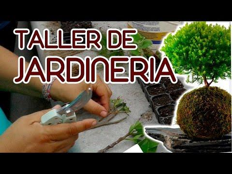 taller de jardineria basica