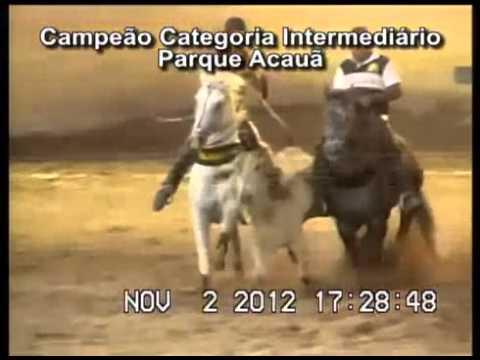 Dom Roxão - Depoimento de vaqueiros e profissionais sobre o garanhão.