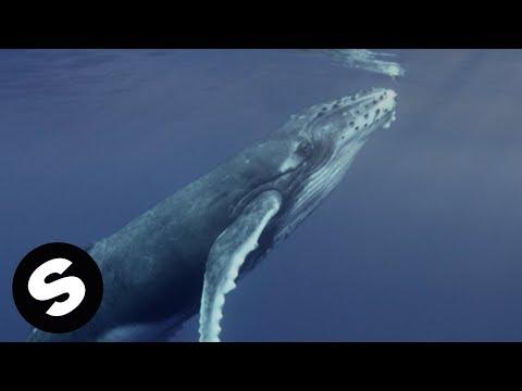 Alok, Zeeba and IRO - Ocean Official Music Video