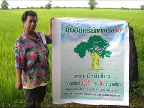 กุญแจสู่ความสำเร็จของเกษตรกรโดย ภควัตเพื่อนเกษตร