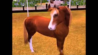 Píseň:http://www.youtube.com/watch?v=H2-1u8xvk54VĚNOVÁNO FACEBOOKOVÉ SKUPINĚ:The Sims 3 KONE! CZ/SKZDE:https://www.facebook.com/groups/544319452259881/Můj profil:http://mypage.thesims3.com/aboutMe/profile.htmlMoje studio:http://www.thesims3.com/mypage/paralovaanca/mystudioA NA:www.thesims3.com    SE JMENUJI:paralovaanca