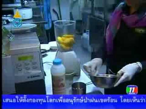 Tasty Thai Restaurants – Channel 11
