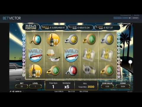 Slot Bonus Compilation and Prize Draw Results - Mega Fortune, Wild Water and More