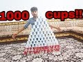 made a castle with 1000 plastic cups!!!!