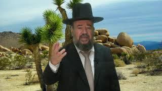 הרב דוד הכהן – פרשת ויצא – אהבת דוד ויהונתן