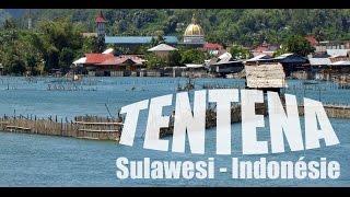 Video Tentena, étape Nature entre les iles Togian et le pays Toraja à Sulawesi MP3, 3GP, MP4, WEBM, AVI, FLV November 2017
