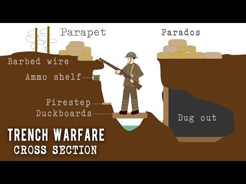 Trench Systems Cross Section