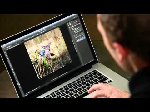 how to create animation in photoshop