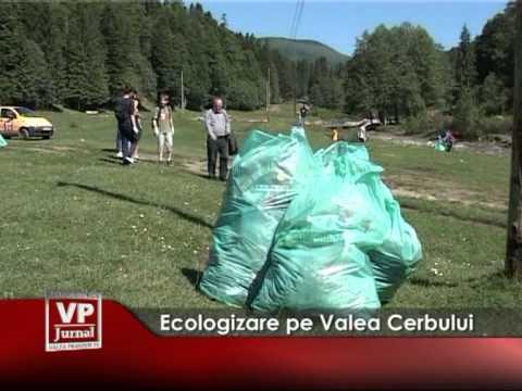 Ecologizare pe Valea Cerbului
