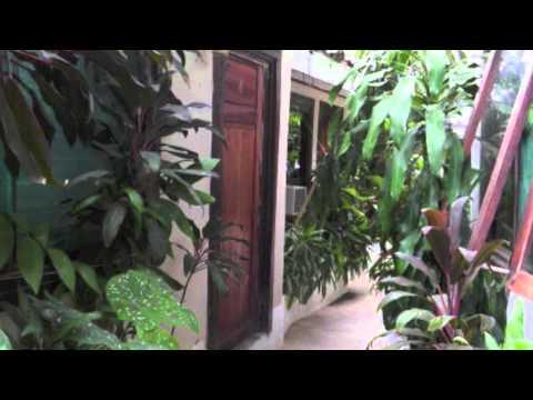 Video of Pura Vida Hostel