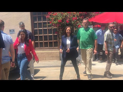 VP Kamela Harris Wears Red, White, And Blue For 4th Of July In L.A.