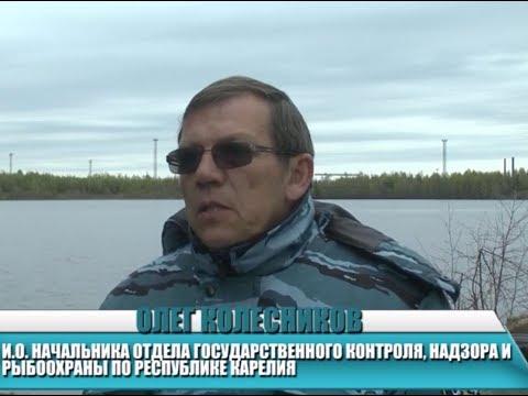 """Акция """"Всероссийский день без сетей"""" прошла в Карелии"""