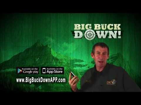 Video of BigBuckDown!