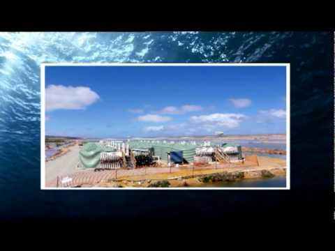 Artemia aquaculture segment ('Fishing with ET' TV series)