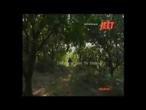 Radharaman Gauam in TV Serial