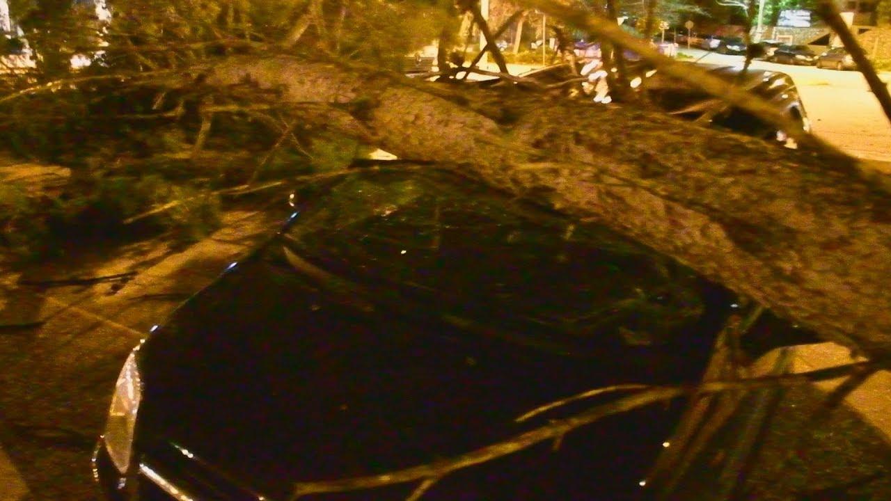 Οι θυελλώδεις άνεμοι έριξαν δέντρα και διέλυσαν ΙΧ στο Ναύπλιο