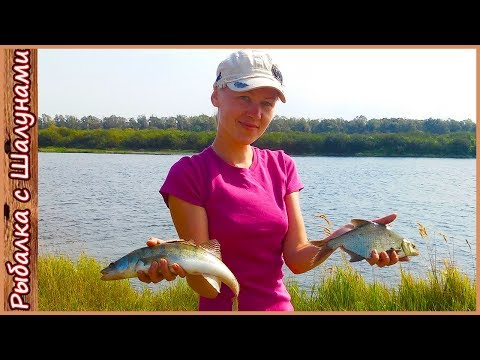 рыбалка видео на днепре на фидер