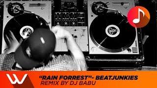 """BeatJunkies Remix by """"DJ BABU"""" - Rain Forrest"""