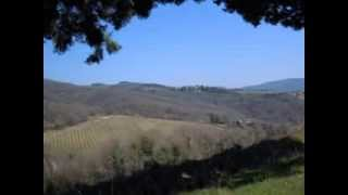 Radda in Chianti Italy  city pictures gallery : Uphill bike ride from Florence to Radda in Chianti Tuscany Italy