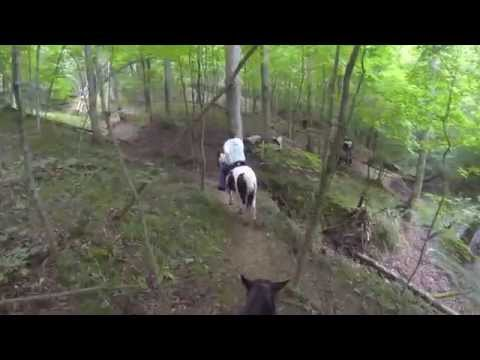 Blake Lowry Horse Camp And Trails