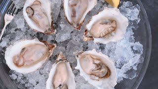 What's the Difference? East Coast vs. West Coast Oysters by Everyday Food