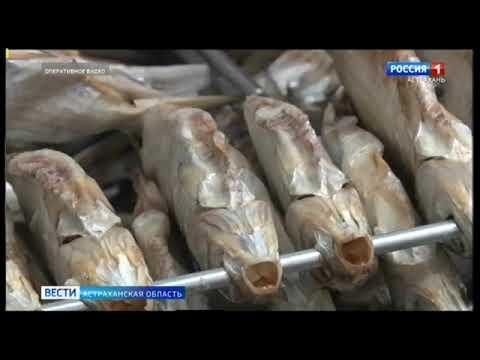 Управлением Россельхознадзора проведен лабораторный мониторинг предприятий рыбной отрасли Астраханской области