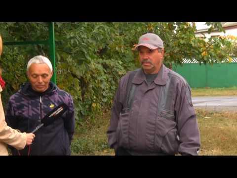 На Житомирщині трактор переїхав вагітну жінку