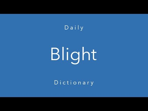 Blight (Daily Dictionary)