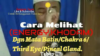 Video CARA MEMBUKA MATA BATIN /CHAKRA KE 6/THIRD EYE/PINEAL GLAND MP3, 3GP, MP4, WEBM, AVI, FLV Agustus 2018