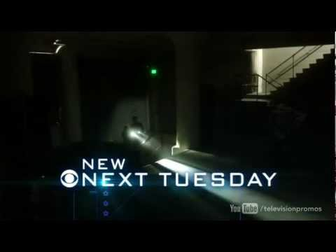 NCIS: Naval Criminal Investigative Service 10.14 (Preview)