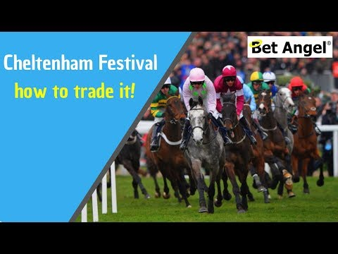 Cheltenham 2017 – Trading Highlights & Information