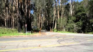 Marysville Australia  city photos gallery : Great driving roads - Marysville to Warburton VICTORIA Australia