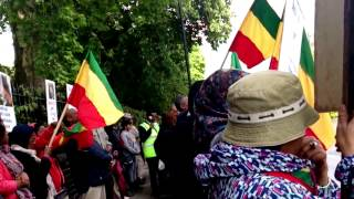 Kefale Alemu On The United Ethiopians Demonstration Against The Killings In Ethiopia