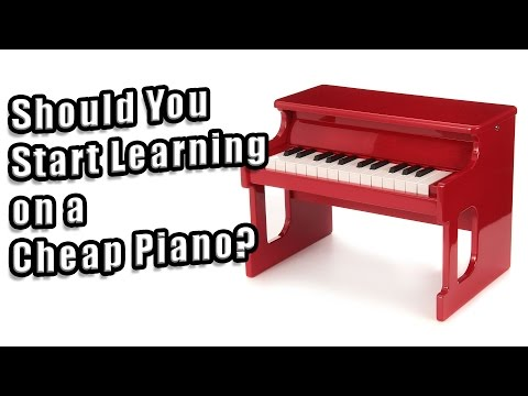 Should You Start Learning on an Inexpensive Instrument?