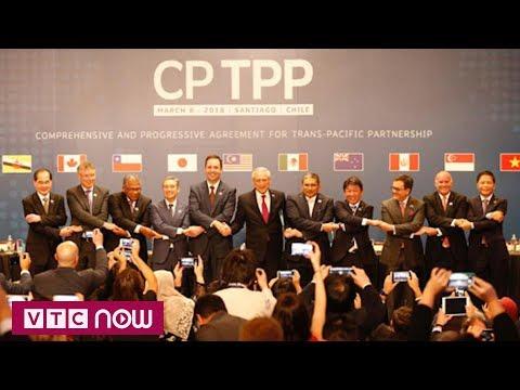 Nhiều ý kiến trái chiều về hiệp định CPTPP | VTC1 - Thời lượng: 101 giây.