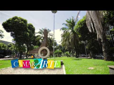 Institucional C�mara GV