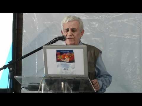 Direito autoral e internet, uma relação em construção - Antonio Miranda
