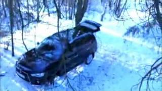 Russian bear attacks fishers and steals their car