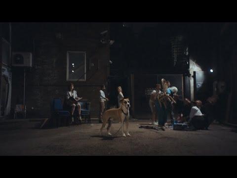 Panda Bear - Mr Noah (Official Video)