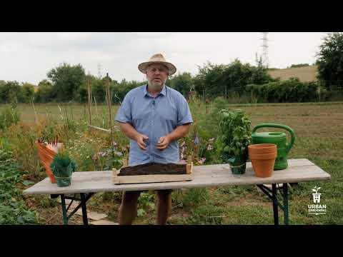 Wurmkompostierung - Was kommt in die Wurm-Kiste?