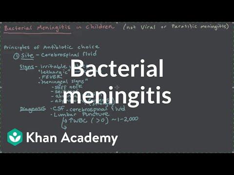 Bacterial meningitis | Miscellaneous | Heatlh & Medicine | Khan Academy