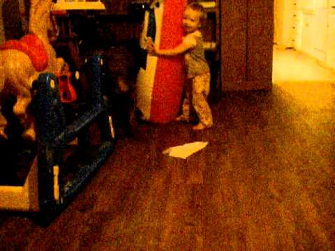Dog Knocks Over Baby