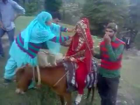 Video Traditional Kashmiri Wedding download in MP3, 3GP, MP4, WEBM, AVI, FLV January 2017