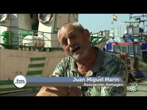 Mariscadores de longuerón en Isla Cristina