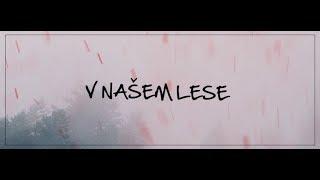 Video Band-a-SKA  -  V Našem lese (Official Lyric Video)