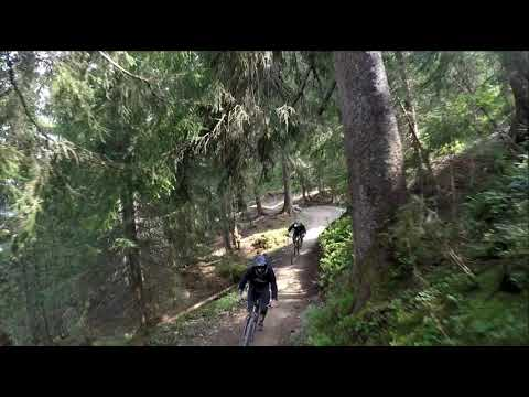 (cz) Bikepark Leogang 2019 STEINBERG LINE BY FOX