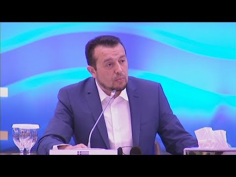 Συνεργασία στους τομείς της ψηφιακής τεχνολογίας πρότεινε, ο Ν. Παππάς
