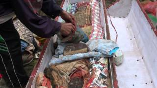 Video Ma'nene - niezwykłe święto zmarłych w plemieniu Toraja (wyspa Sulawesi, Indonezja) MP3, 3GP, MP4, WEBM, AVI, FLV November 2018