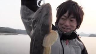 良型マゴチGET!第14回シティーコムTV【釣り対決in伊万里湾】