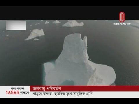 Oxygen levels decreasing in oceans (08-12-2019) Courtesy: Independent TV